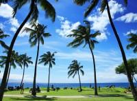 Hawaii tropical beach