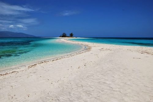 Cresta de Gallo, Romblon